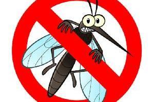 Szúnyoggyérítés földi 2021.06.18.